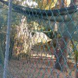 Centro Azalee: stato di abbandono